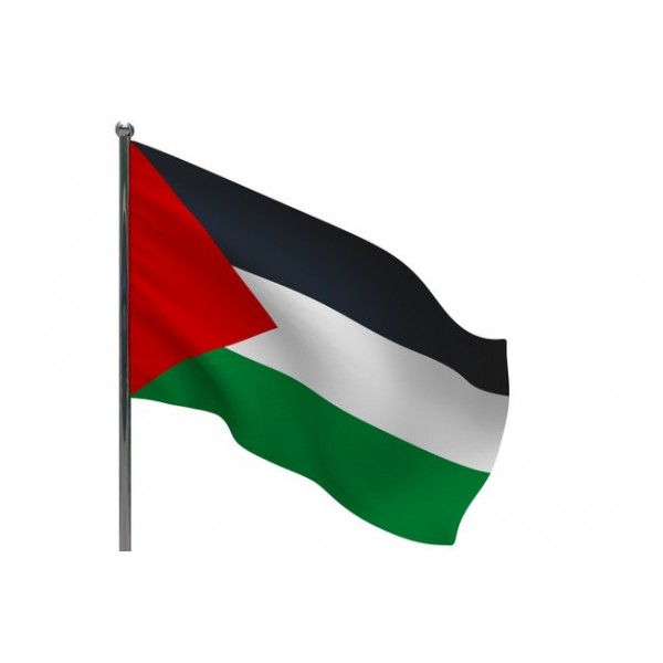 Palestine Flag - (Large) 87x60