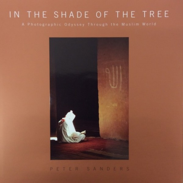 In The Shade of The Tree