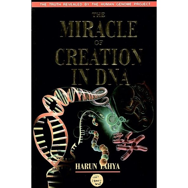 The miracle of creation in DNA